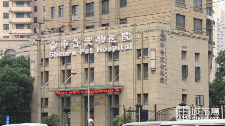 申普宠物医院(徐家汇路店)