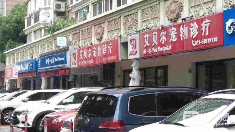 艾贝尔宠物医院(玉佛寺店)