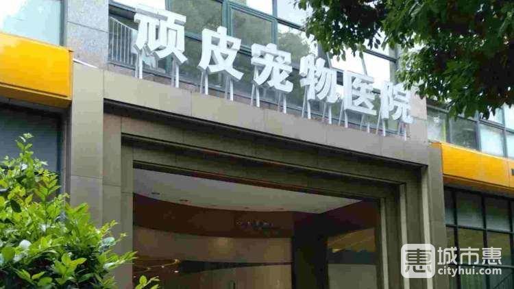 顽皮家族宠物医院(虹桥路总院)